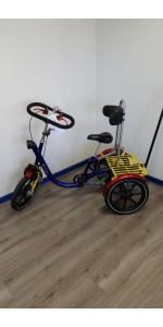 Driewieler  |Van Raam Mini | Gebruikt